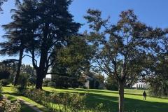 Villa-Godi-Piovene_Il-Parco_17