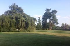 Villa-Godi-Piovene_Il-Parco_8