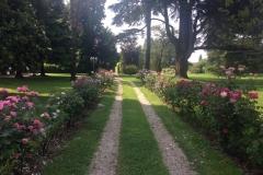 Villa-Godi-Piovene_Il-Parco_9