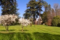 Villa-Godi-Piovene_Il-Parco_12