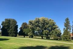 Villa-Godi-Piovene_Il-Parco_16